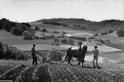 Les Carelles, Saint Martin en Haut, 2014, Bernard Lesaing