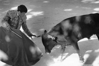 Arènes de Fontvieille, 2007 © Bernard Lesaing