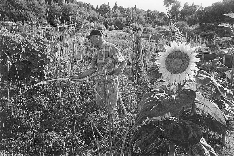 Des jardins familiaux à la disposition des retraités et leurs familles, San Sisto, Perugia, 1998 © Bernard Lesaing