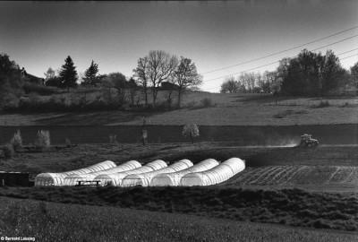 Duerne, 2014, Bernard Lesaing