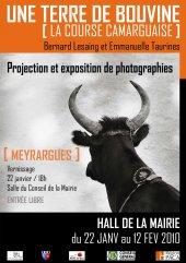 Exposition-projection «Une terre de bouvine, la course camarguaise»